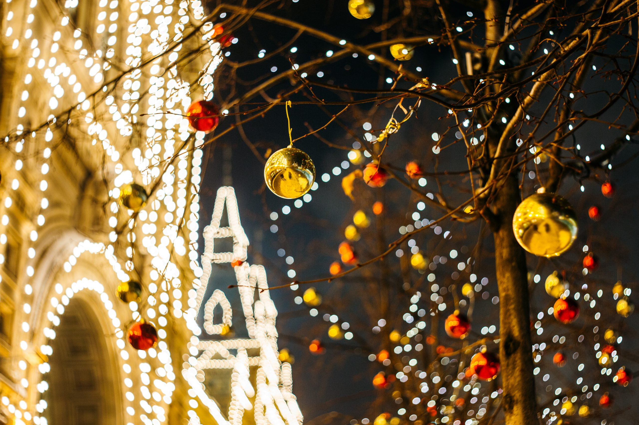 Wintertime picture of a tree with gold and red ornaments hanging from it and to the left is a building completely covered in white lights