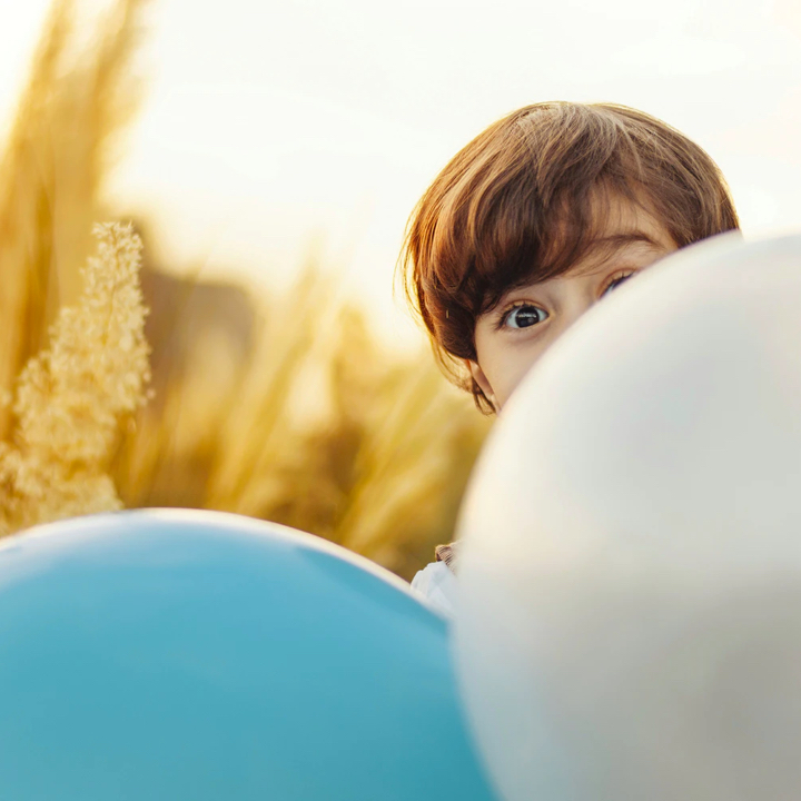 A boy in a wheat field is hiding behind a gray balloon and a blue balloon
